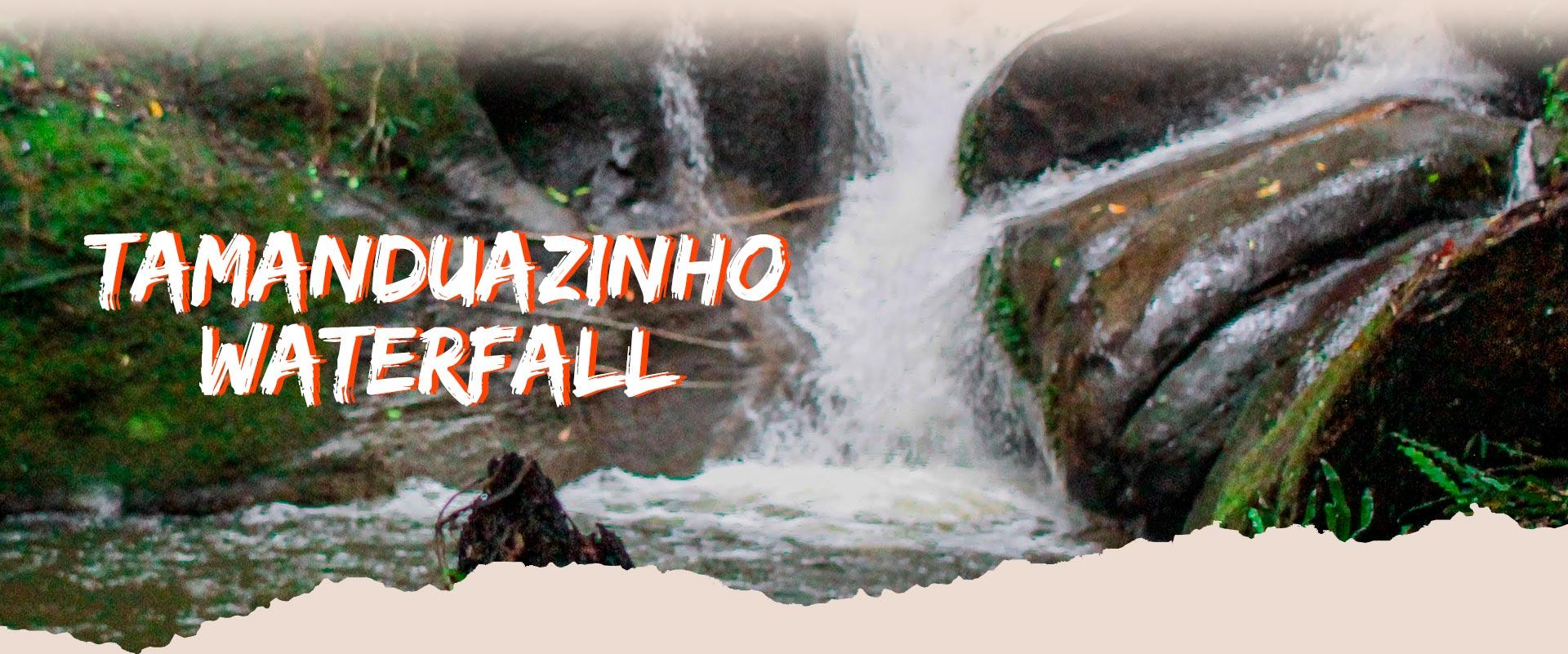 banner-tamanduazinho